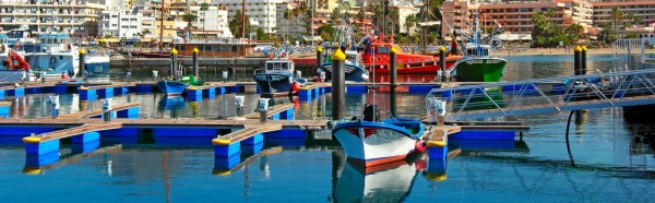 The Canary Islands Discovery