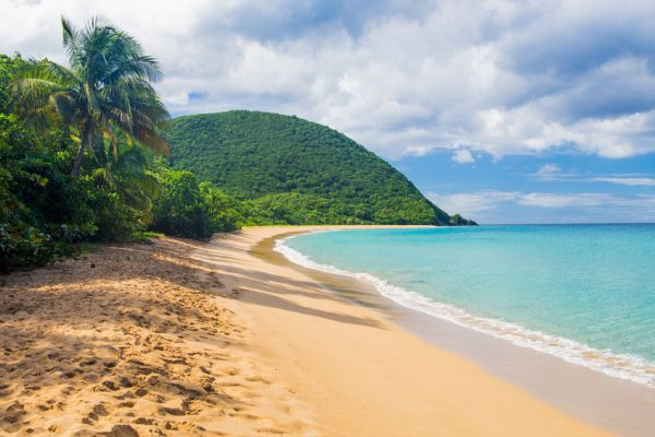 Des Haies Guadeloupe Grand Anse Beach