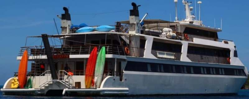 M/Y Pegasos The Flying Horse Renovation